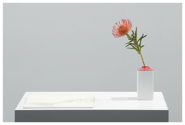 "Light Sketch ""Leucospermum"" / Nadelkissen 2020