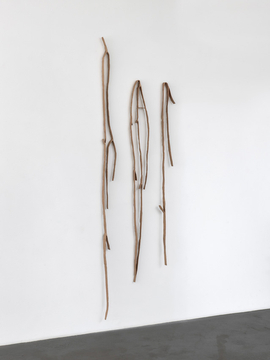 swaying weeds, 2019