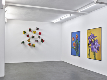 Installation view - Hans-Peter Feldmann